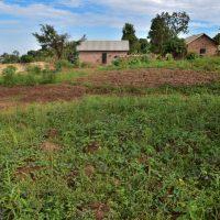 Land For Sale: Kasangati-uganda