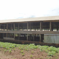 COMMERCIAL FARM FOR SALE Ugx 600,000,000  Kaajjansi Town Council, Entebbe road Kampala