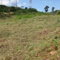 0.5 acre  Milo land  for Sale, Bwebajja- Entebbe Uganda